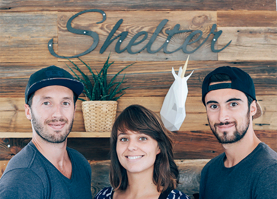 LE COLLECTIF SHELTER